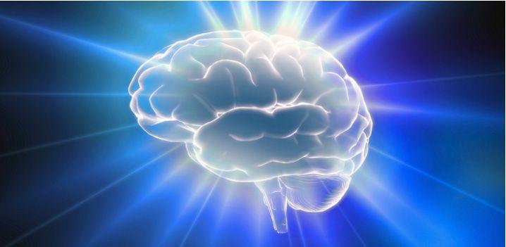 Kako lahko stare možgane naučite novih trikov