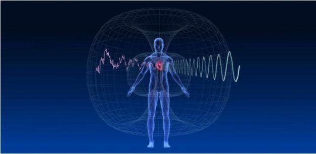 Srce ima lastno energijsko polje