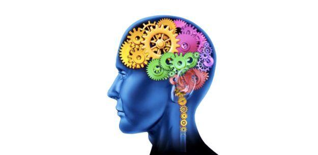 Telesna inteligenca in mehanizmi samozdravljenja