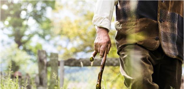 Podaljšanje življenja in upočasnjeno staranje